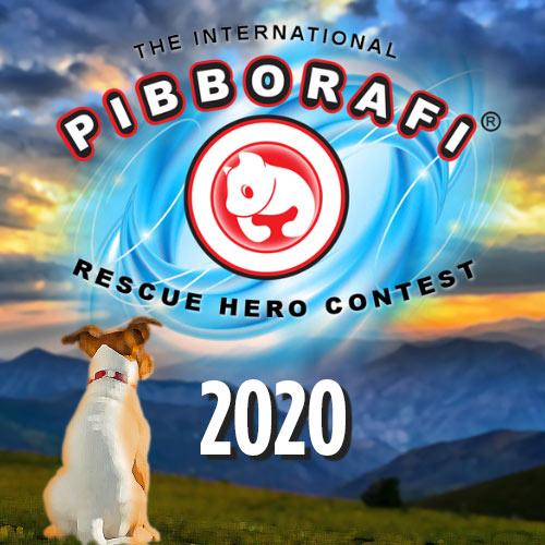 The International Pibborafi Rescue Hero Contest